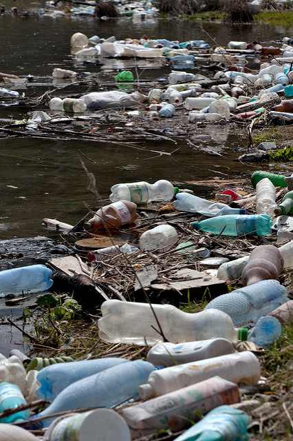 Lots of plastic PET bottles from sodas and mineral water along with other household garbage items lying on the shore of an artificial lake polluting its water. The river brings all these junk from the upstream village and it gradually piles up.